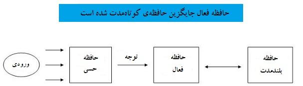 مدل حافظه فعال- سایت روانشناسی دکتر کامیار سنایی