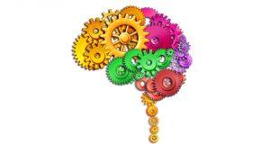 پردازش اطلاعات- سایت روانشناسی دکتر کامیار سنایی