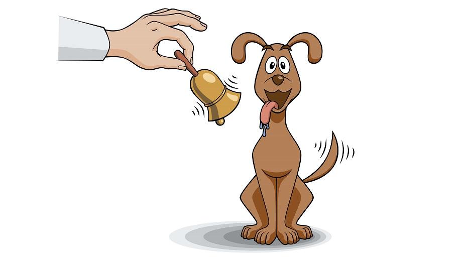 تصویر از سگ پاولف