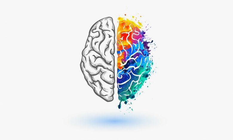 روانشناسی رنگها- دکتر کامیار سنایی روانشناس